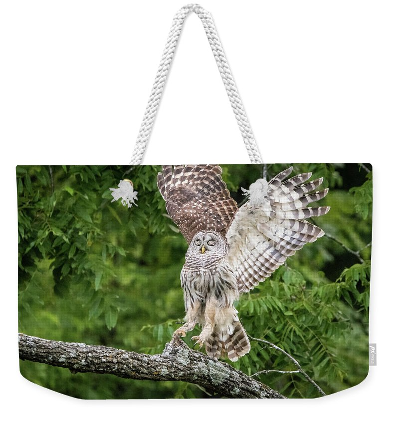 Nature Weekender Tote Bag featuring the photograph The Landing by Linda Shannon Morgan