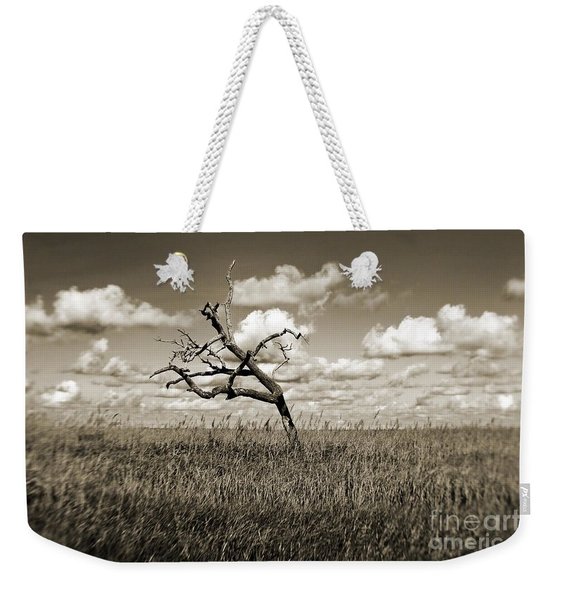 Tree Weekender Tote Bag featuring the photograph The Last One Standing - Sepia by Scott Pellegrin