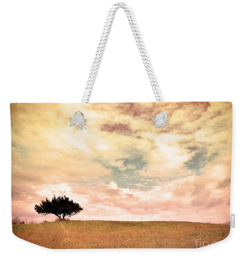 Tree Weekender Tote Bag featuring the photograph The Learning Tree by Tara Turner