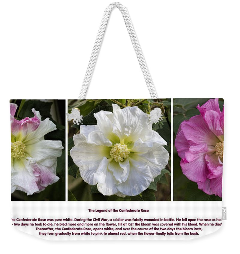 Confederate Rose Weekender Tote Bag featuring the photograph The Legend Of The Confederate Rose by Kathy Clark
