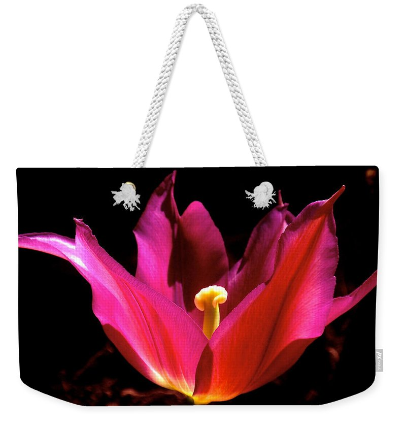 Tulip Weekender Tote Bag featuring the photograph The Light Of Day by Rona Black