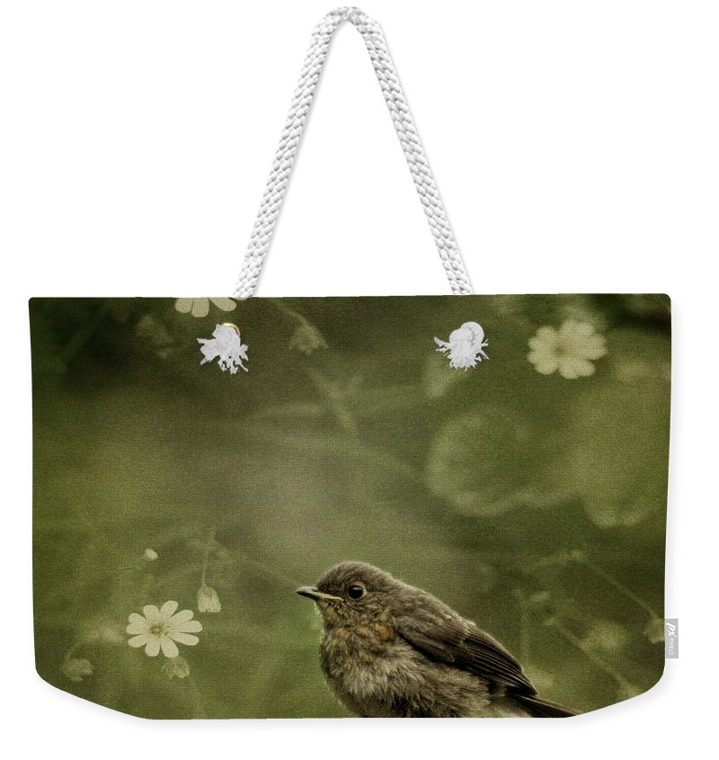 Robin Weekender Tote Bag featuring the photograph The Little Robin by Angel Tarantella
