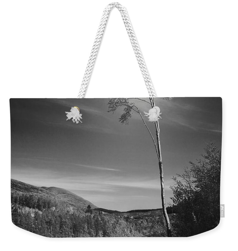 Tree Weekender Tote Bag featuring the photograph The Loner by Dorit Fuhg