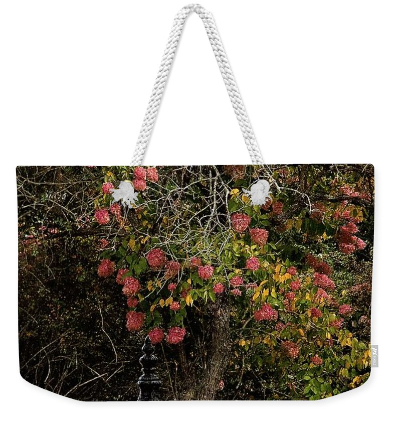 Fence Weekender Tote Bag featuring the painting The Manor Gate by RC DeWinter