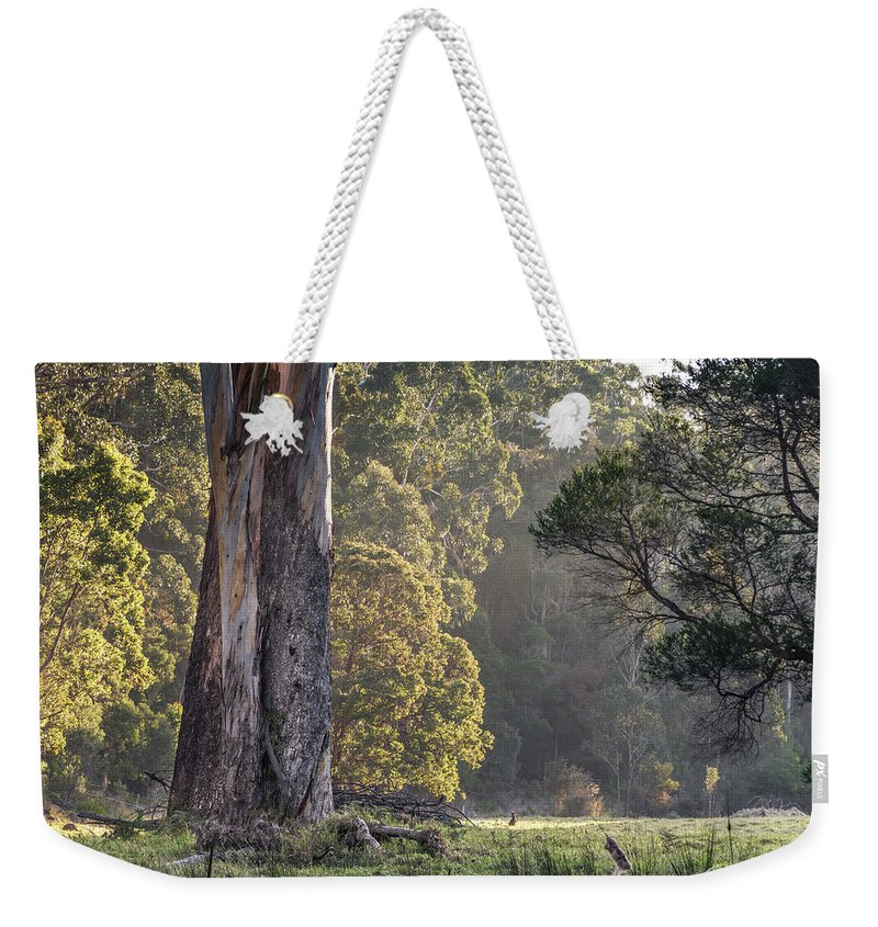 Landscape Photography Weekender Tote Bag featuring the photograph The Meadow by Racheal Christian
