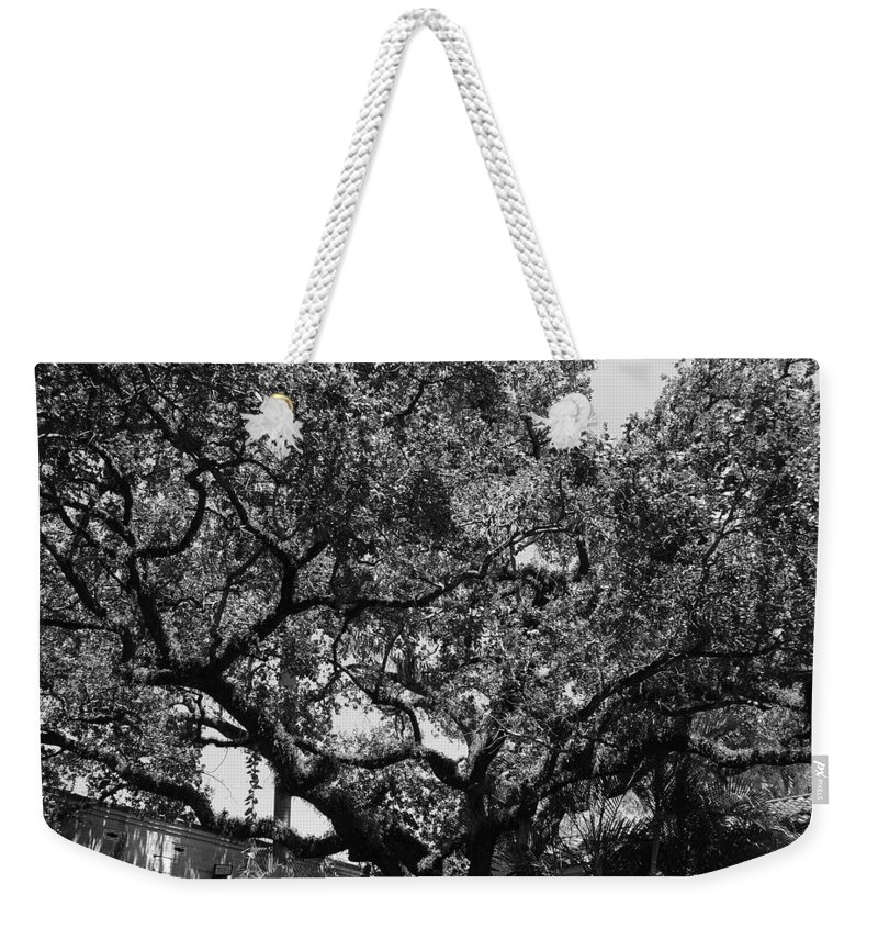 Black And White Weekender Tote Bag featuring the photograph The Monastery Tree by Rob Hans