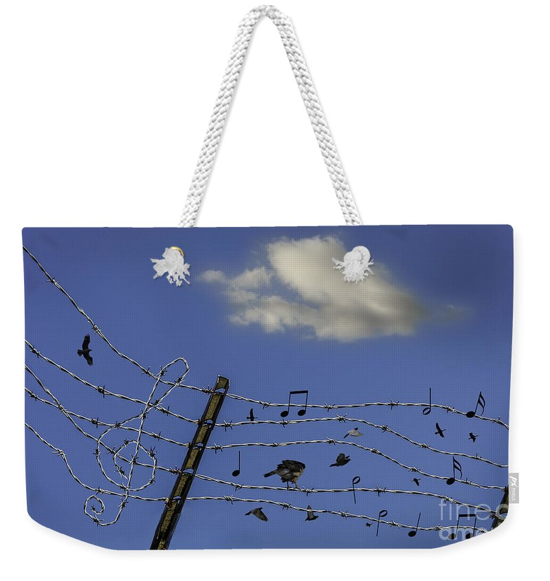 Bird Weekender Tote Bag featuring the photograph The Musical Barbed Wire Birds by Joseph Yvon Cote