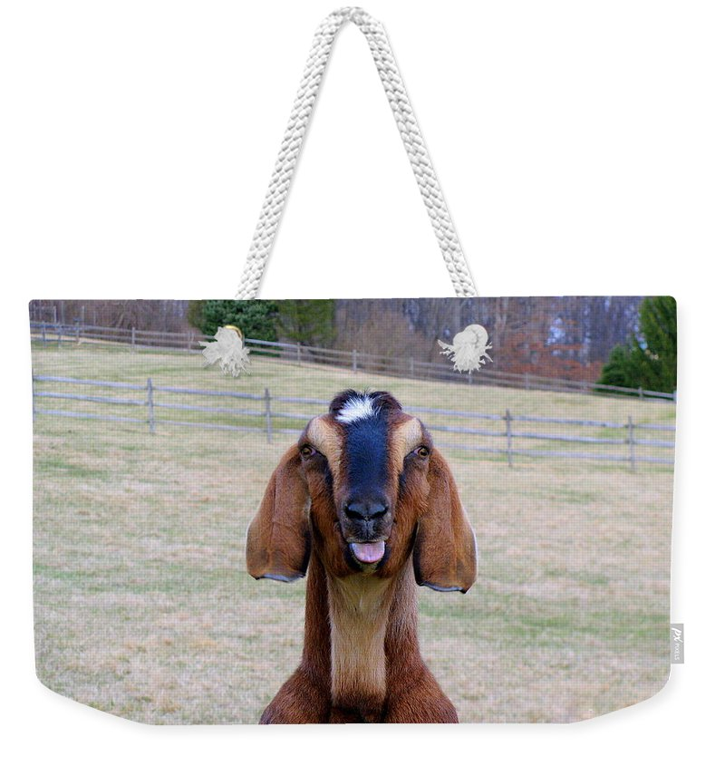 Animals Weekender Tote Bag featuring the photograph The Name Is Billy... by Deborah Crew-Johnson