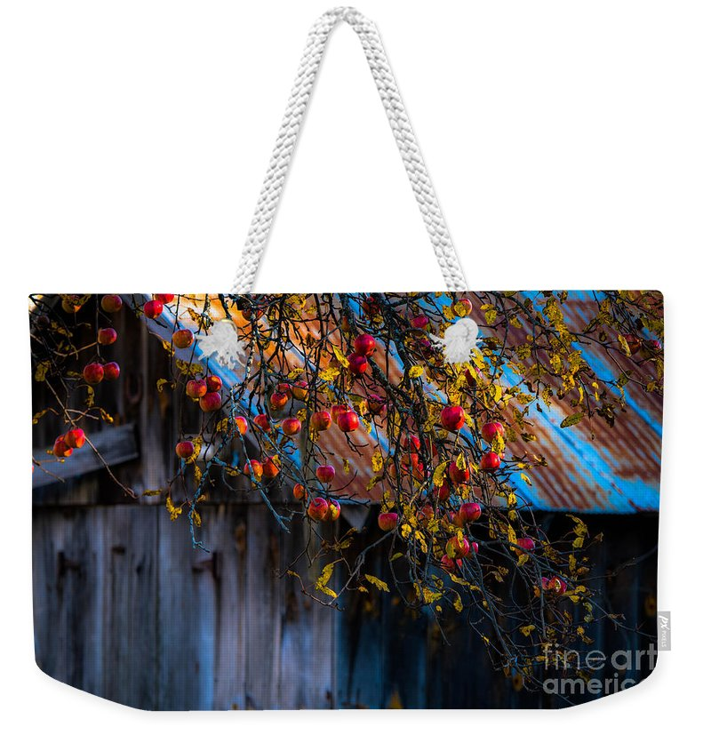 Barn Weekender Tote Bag featuring the photograph The Old Barn by Sherman Perry