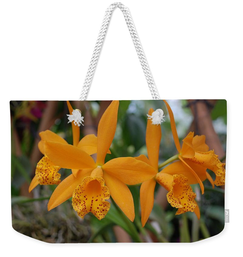 Macro Weekender Tote Bag featuring the photograph The Orange Orchids by Rob Hans