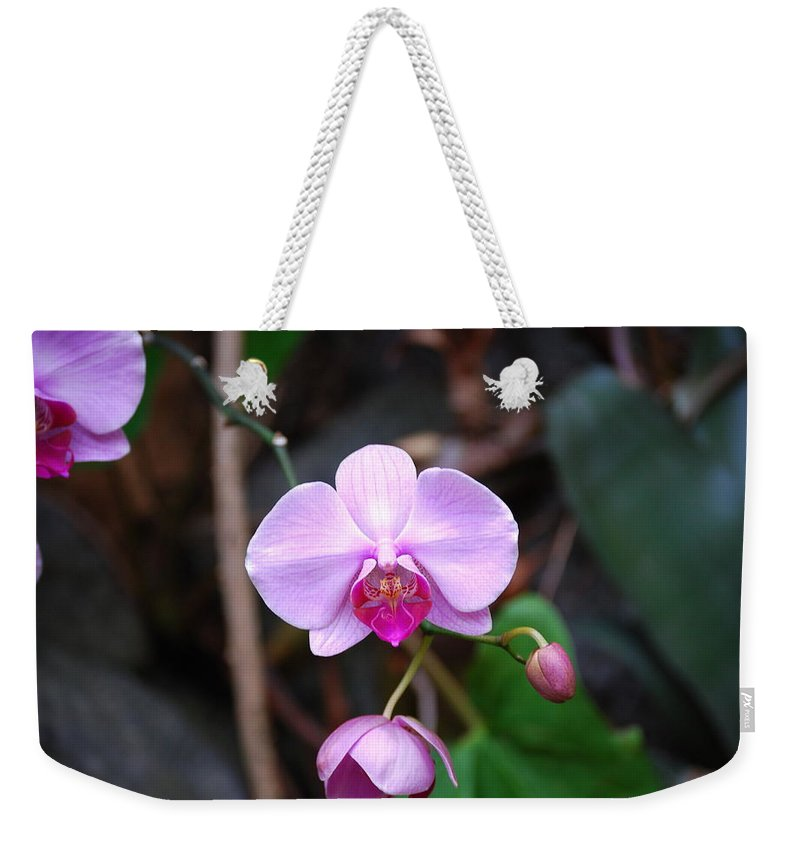 Orchid Weekender Tote Bag featuring the photograph The Orchid by Eric Liller