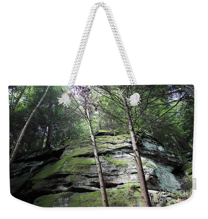 Nature Weekender Tote Bag featuring the photograph The Original My Space by Amanda Barcon