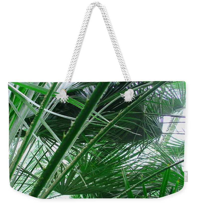 Palm Tree Weekender Tote Bag featuring the photograph The Palm House Kew England by Heather Lennox