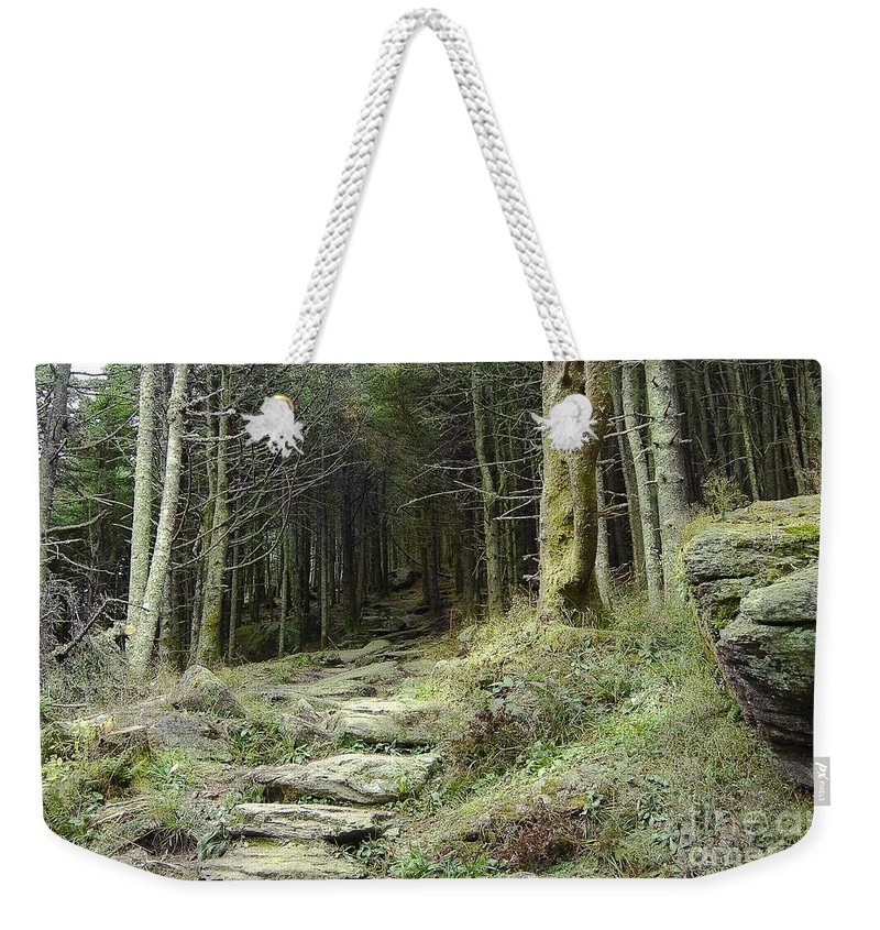 Enchanted Forest Weekender Tote Bag featuring the painting The Path Leading Up To by Johnnie Stanfield