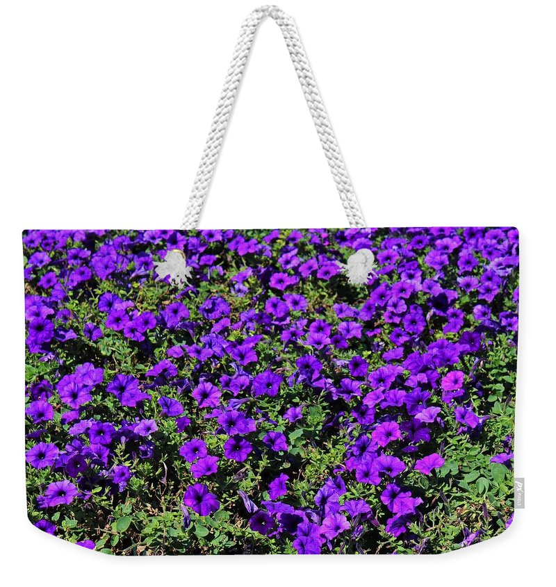 Purple Weekender Tote Bag featuring the photograph The Pathway To Purple by Michiale Schneider