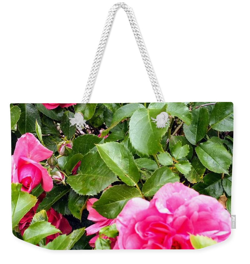 Botanical Flower's Nature Weekender Tote Bag featuring the photograph The peaceful place 10 by Valerie Josi