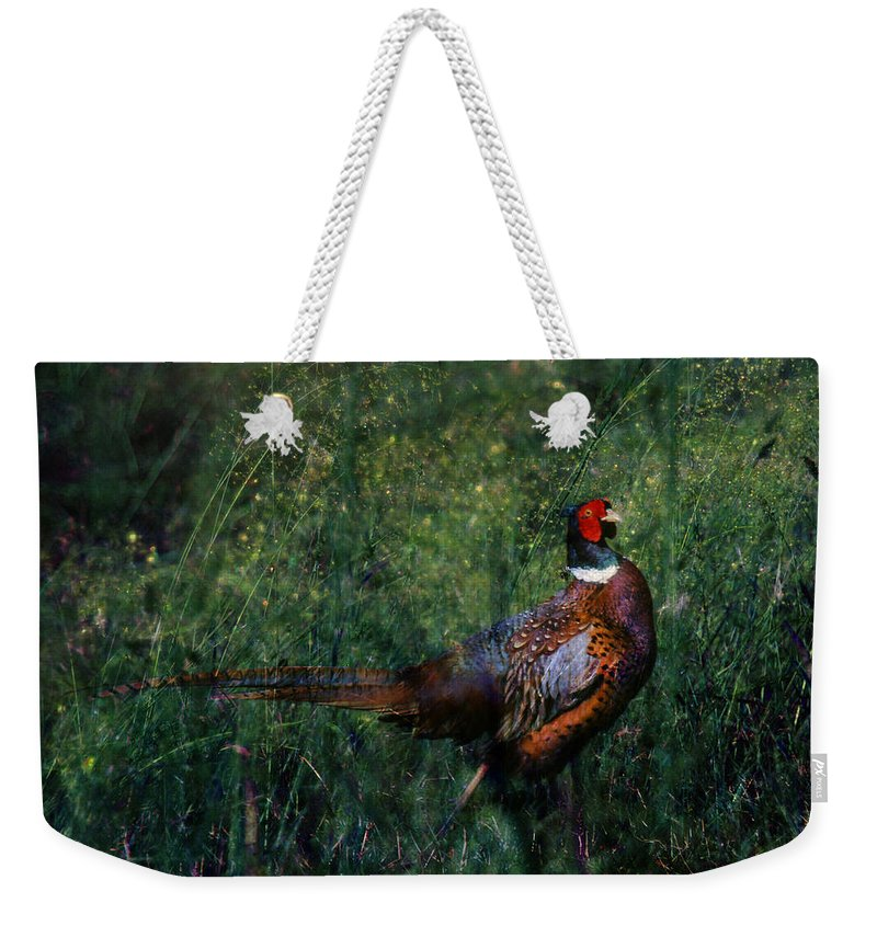 Pheasant Weekender Tote Bag featuring the photograph The Pheasant In The Autumn Colors by Angel Ciesniarska