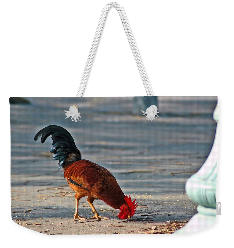 Rooster Weekender Tote Bag featuring the photograph The Picking Rooster by Susanne Van Hulst