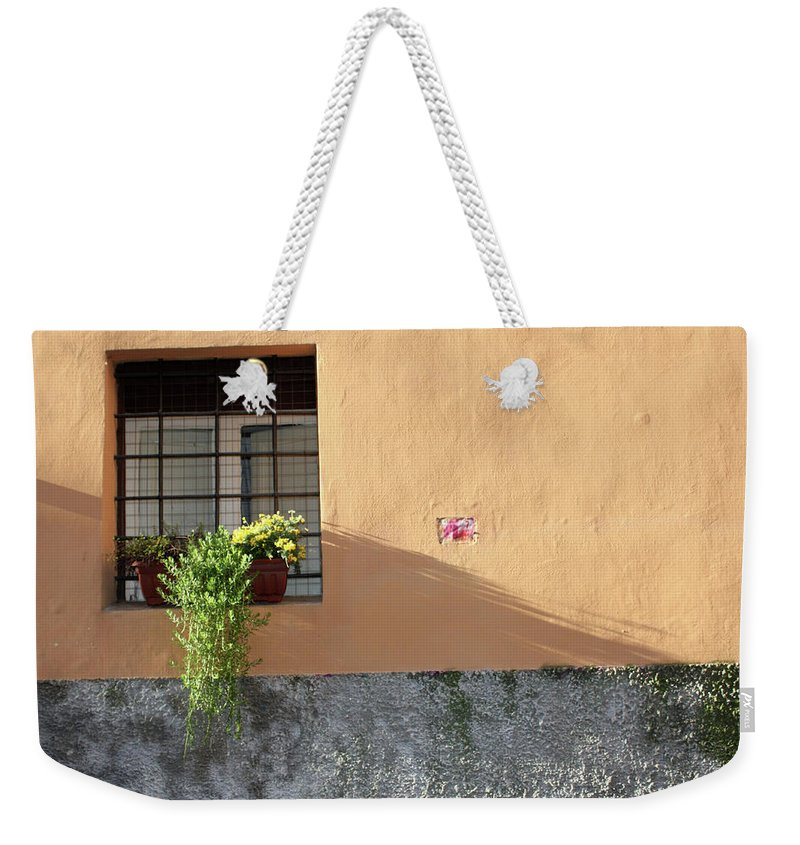 Rome Weekender Tote Bag featuring the photograph The Plant by Munir Alawi