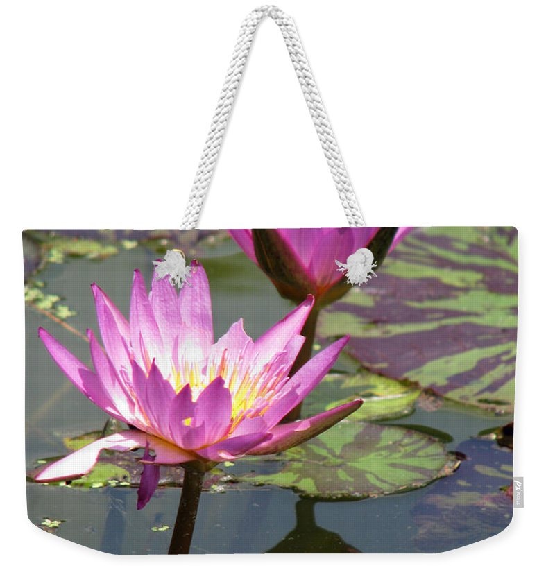 Lillypad Weekender Tote Bag featuring the photograph The Pond by Amanda Barcon