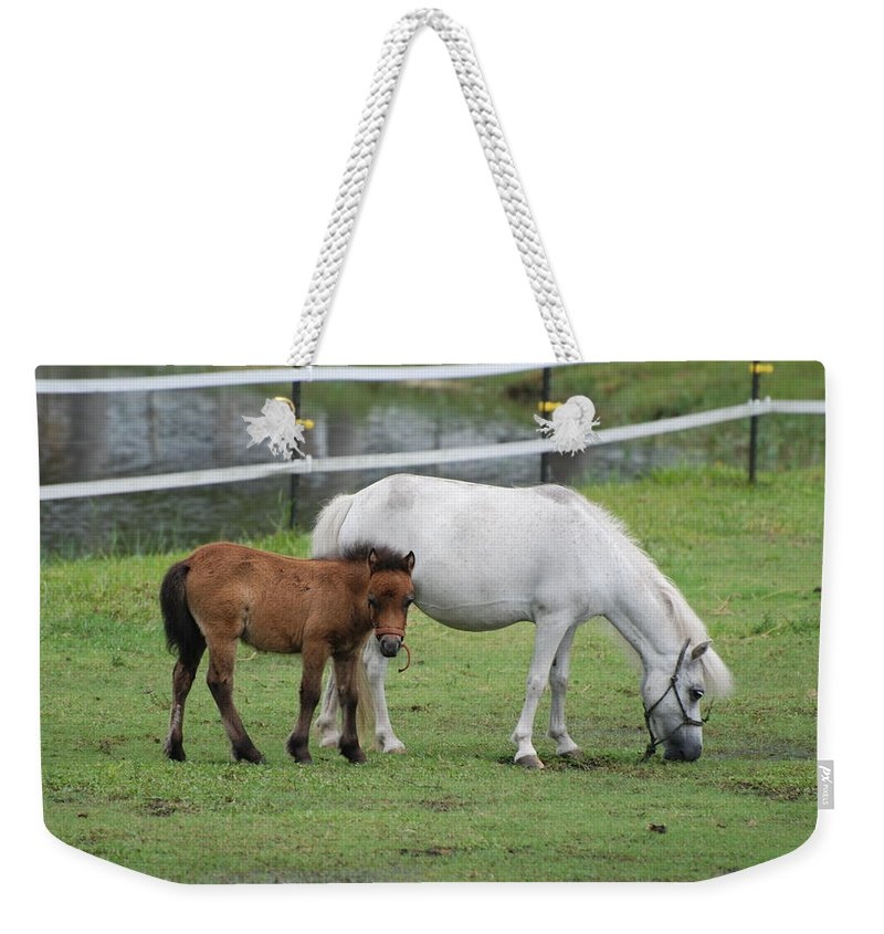 Horse Weekender Tote Bag featuring the photograph The Ponys by Rob Hans