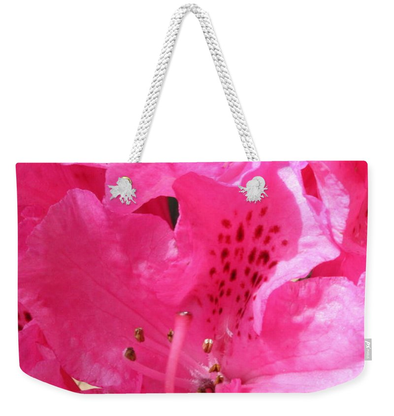 Rhododendron Weekender Tote Bag featuring the photograph The Power Of Pink by Carol Groenen