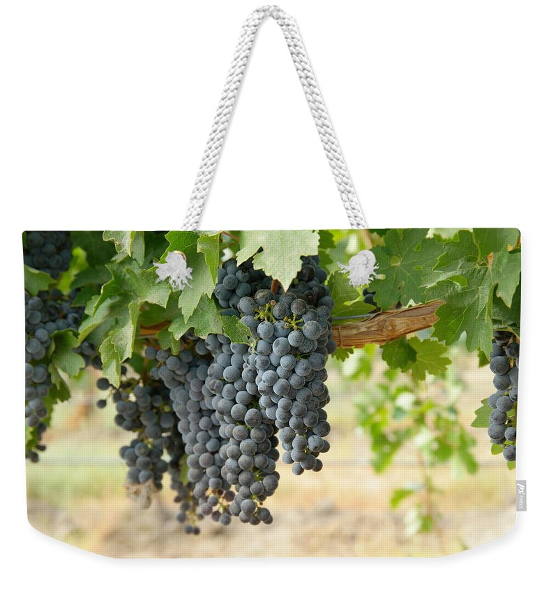 Wine Weekender Tote Bag featuring the photograph The Promise Of New Wine by Jeff Swan