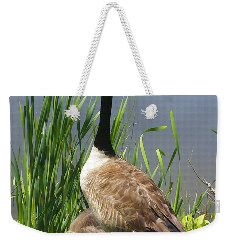 Goose Weekender Tote Bag featuring the photograph The Protector by Deborah Benoit