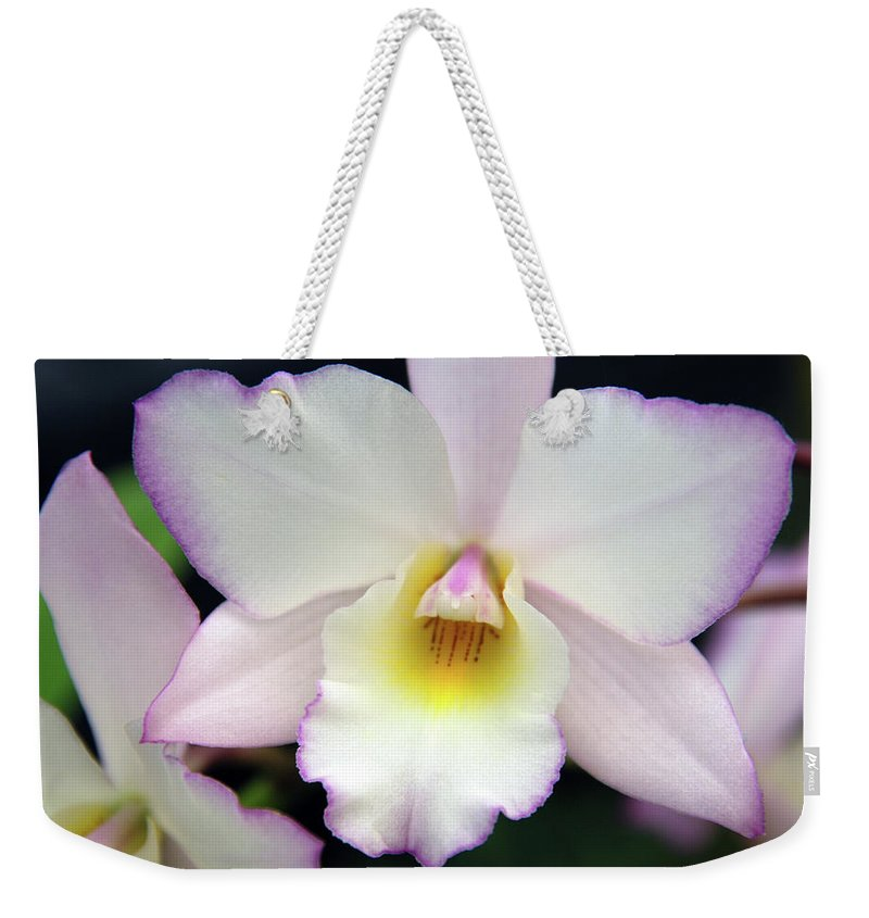 Orchids Weekender Tote Bag featuring the photograph The Purple Coat by Susanne Van Hulst
