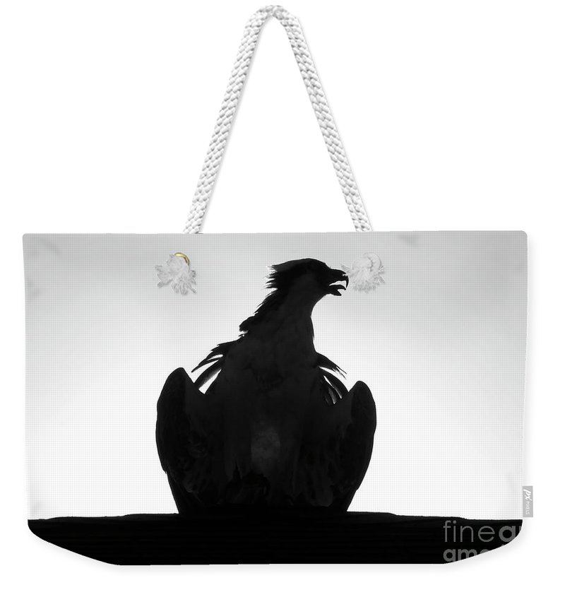 Raptor Weekender Tote Bag featuring the photograph The Raptors Call by David Lee Thompson