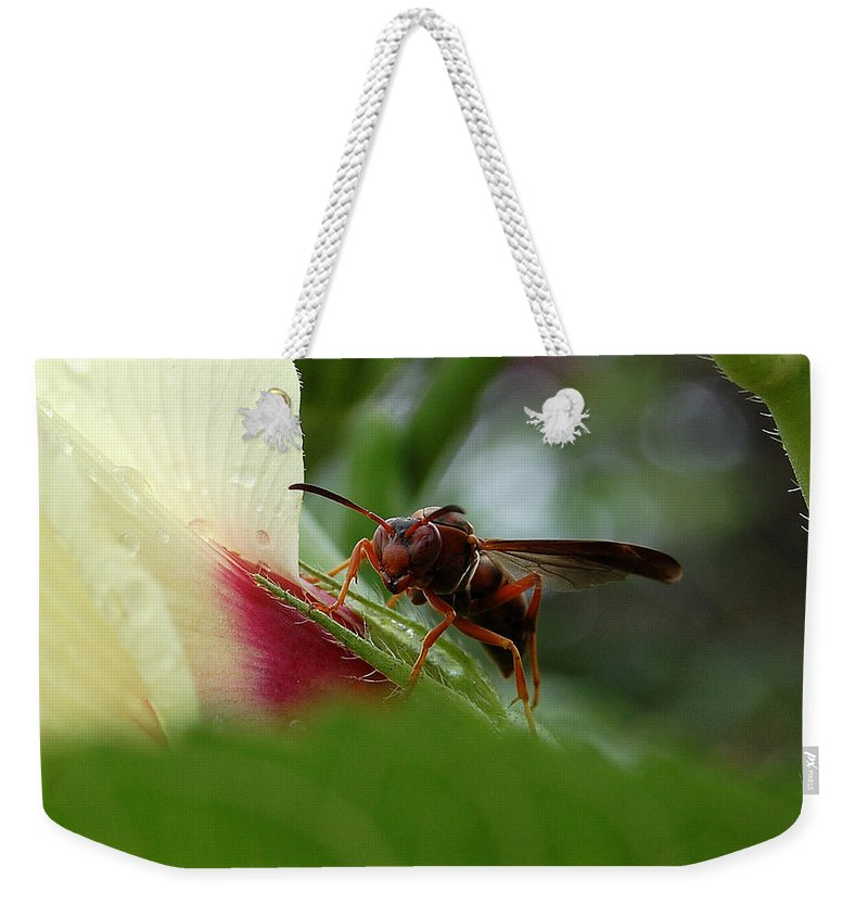 Wasp Weekender Tote Bag featuring the photograph The Real Gardener by Robert Meanor