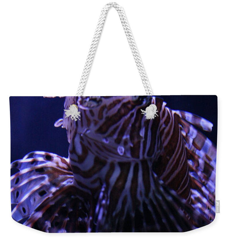 Red Lionfish Weekender Tote Bag featuring the photograph The Red Lionfish by Selena Wagner