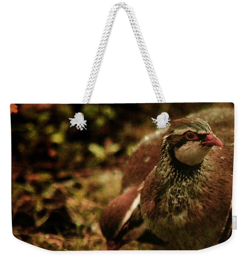 Partridge Weekender Tote Bag featuring the photograph The Redlegged Partridges by Angel Tarantella