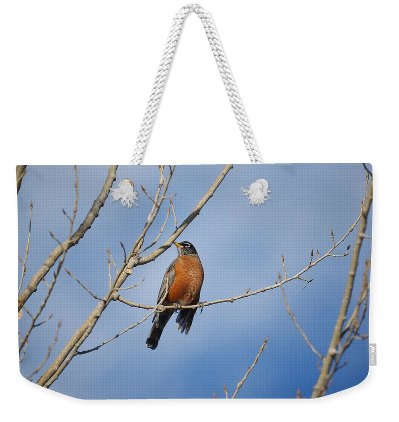 Robins Weekender Tote Bag featuring the photograph The Robin by Ernie Echols