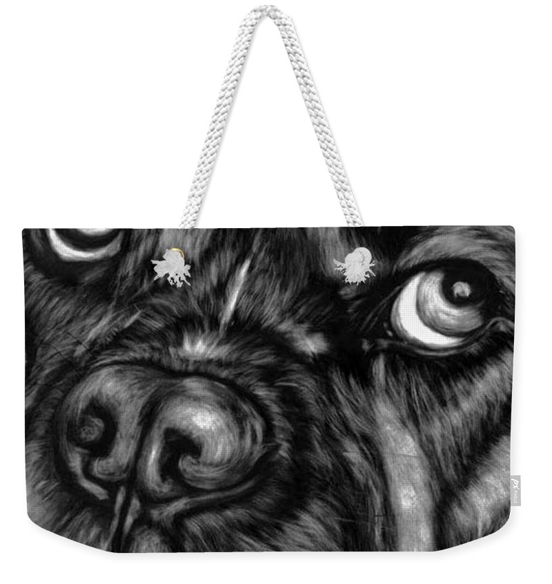 Animals Weekender Tote Bag featuring the painting The Sad Boxer by Portraits By NC