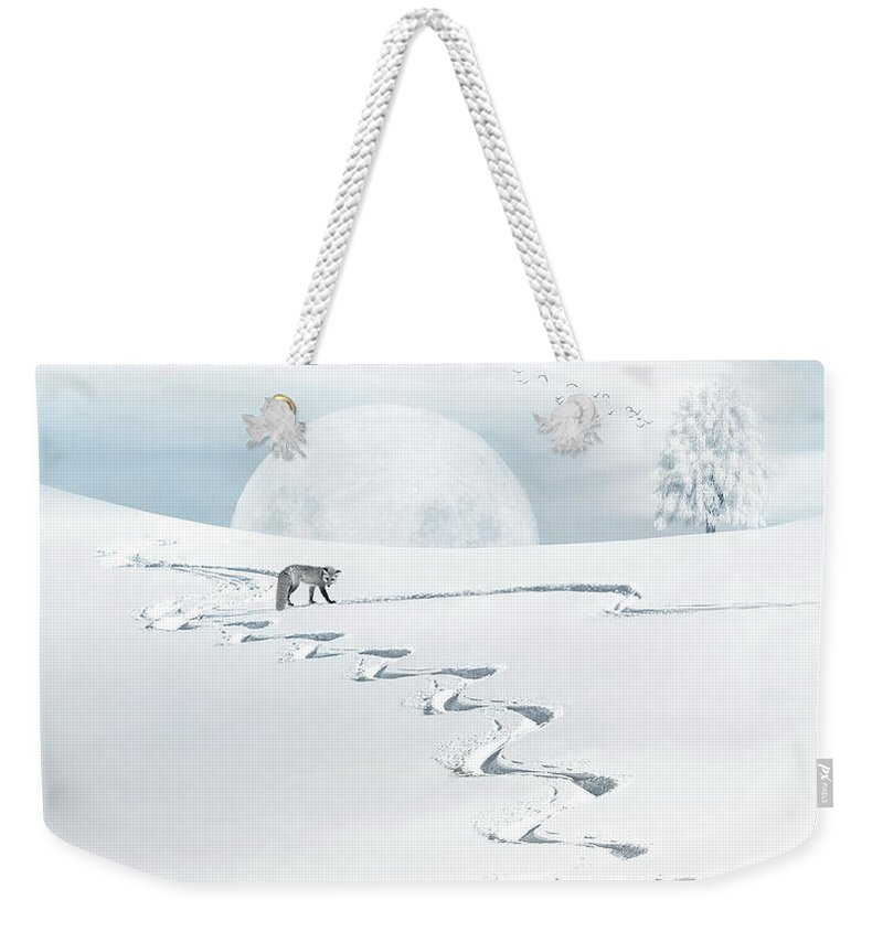 Fox Weekender Tote Bag featuring the photograph The Silver Fox by Andrea Kollo