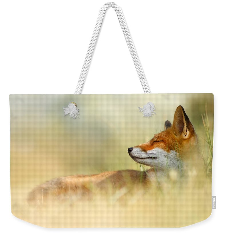 Red Fox Weekender Tote Bag featuring the photograph The Sleeping Beauty - Wild Red Fox by Roeselien Raimond