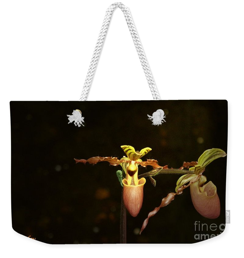 Lady Slipper Orchids Weekender Tote Bag featuring the photograph The Slippers by Joanne Smoley