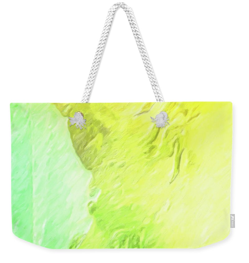 Smug Weekender Tote Bag featuring the painting The Smug Statue by Joaquin Abella