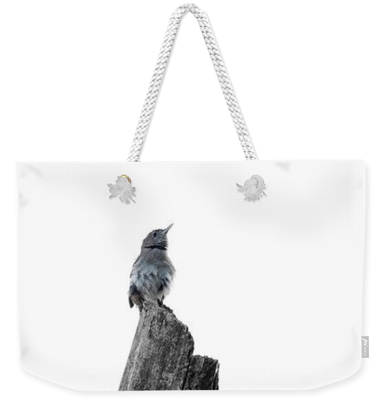 Wren Weekender Tote Bag featuring the photograph The Stand by Carl Saathoff