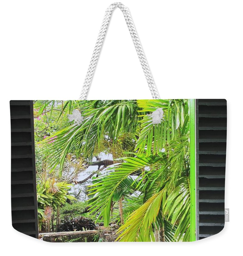 Window Weekender Tote Bag featuring the photograph The Studio Window by Ian MacDonald