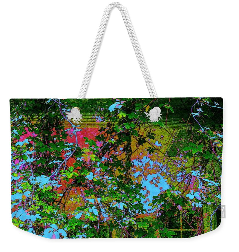 Photography Weekender Tote Bag featuring the photograph The Sun Catcher by Nancy Kane Chapman