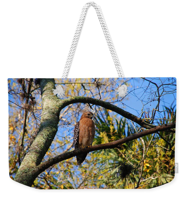 Buzzard Weekender Tote Bag featuring the photograph The Supervisor by Susanne Van Hulst