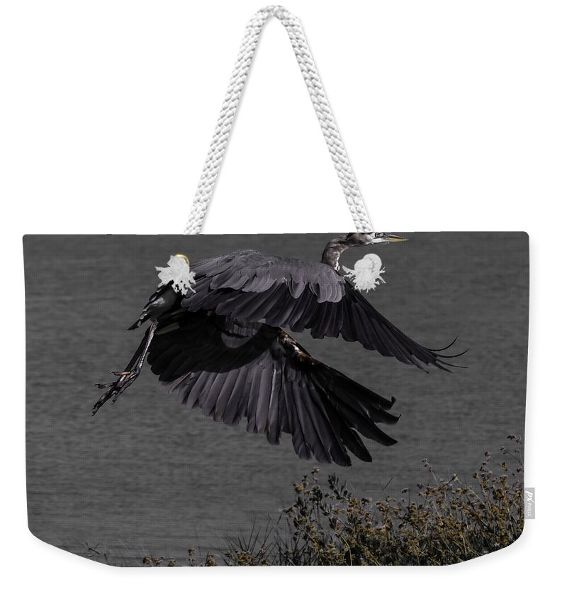 Bird Weekender Tote Bag featuring the photograph The Take Off by Leticia Latocki
