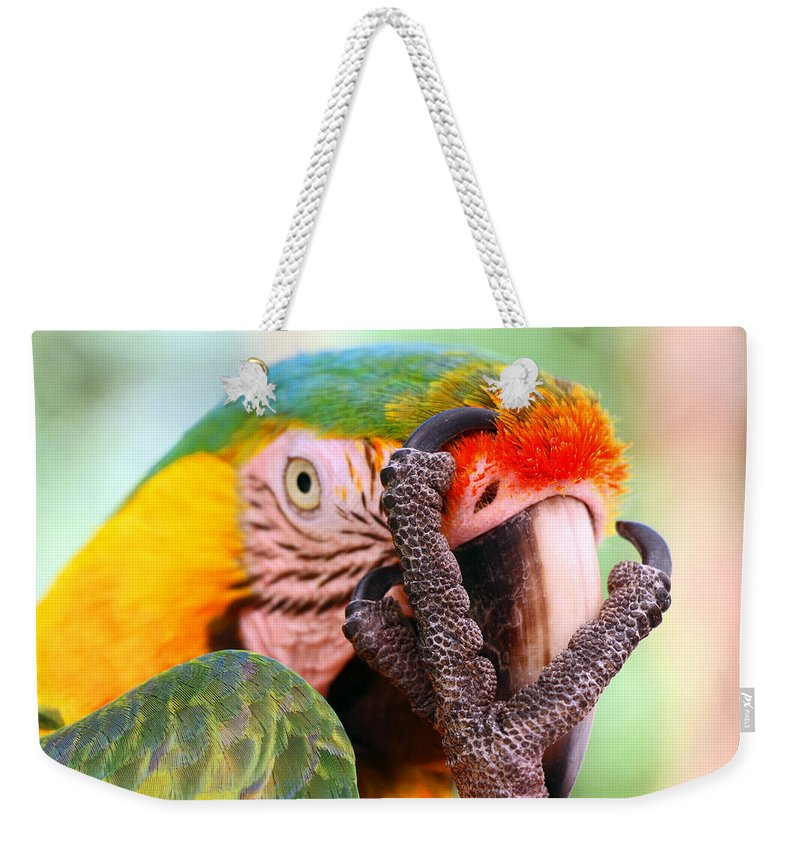 Parrot Weekender Tote Bag featuring the photograph The Thinker by Iryna Goodall