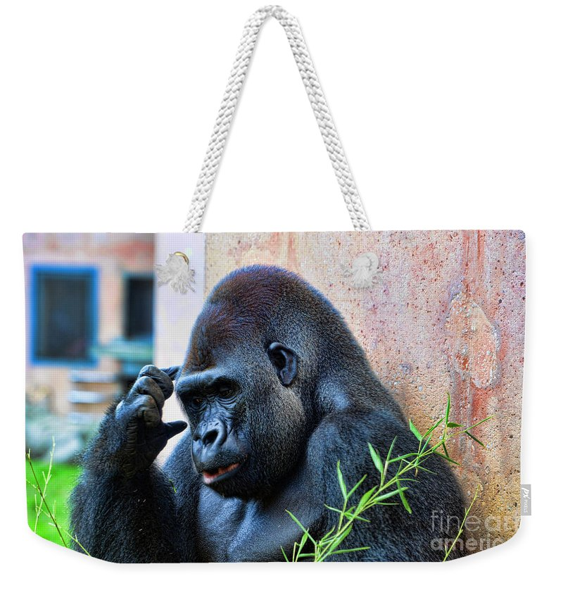 Gorilla Weekender Tote Bag featuring the photograph The Thinking Gorilla by Paul Ward