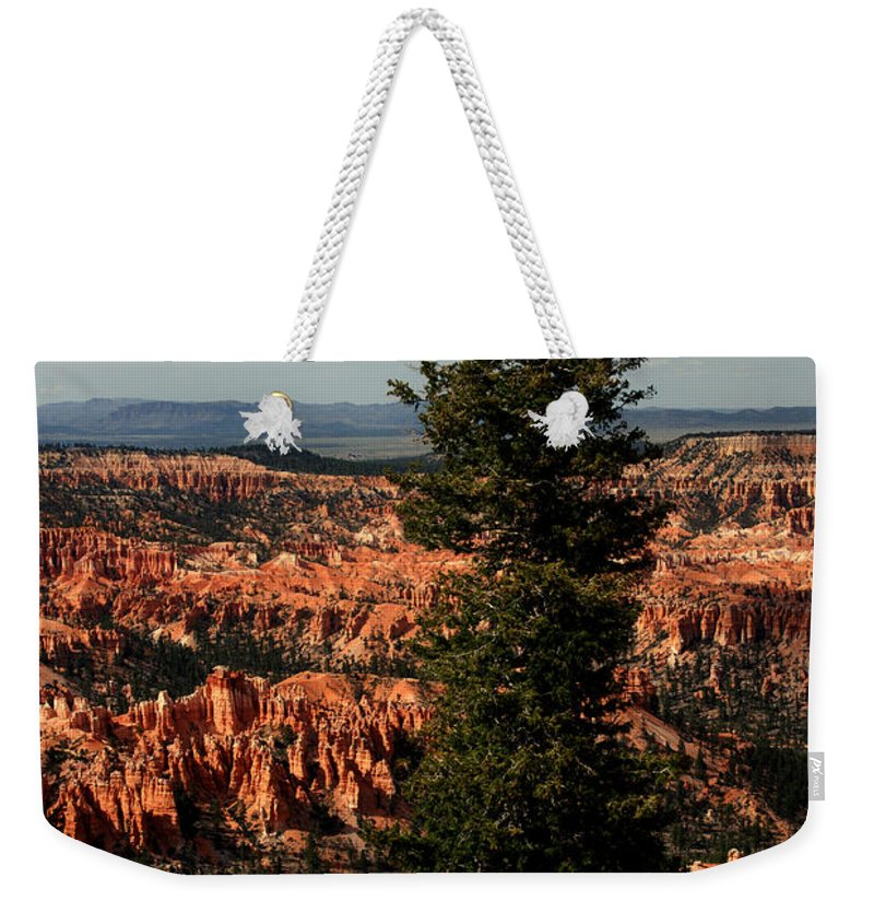 Bryce Canyon Weekender Tote Bag featuring the photograph The Tree In Bryce Canyon by Susanne Van Hulst