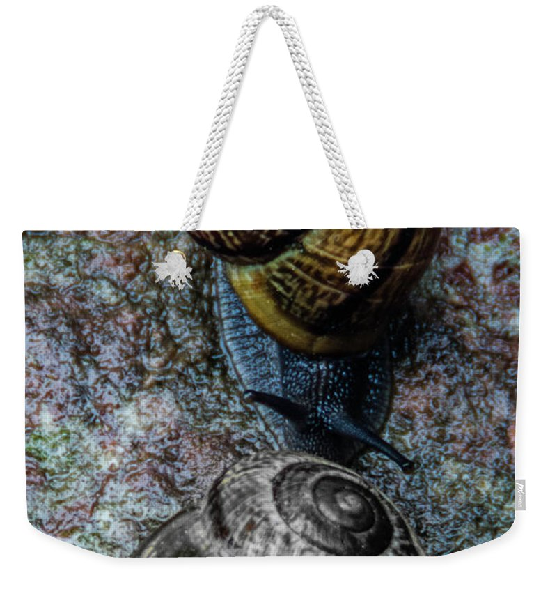 Snails Weekender Tote Bag featuring the photograph The Visit by Wolfgang Stocker