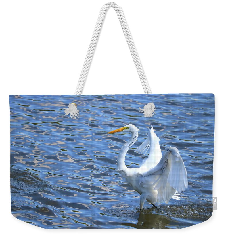 Weekender Tote Bag featuring the photograph The Walk by Tony Umana