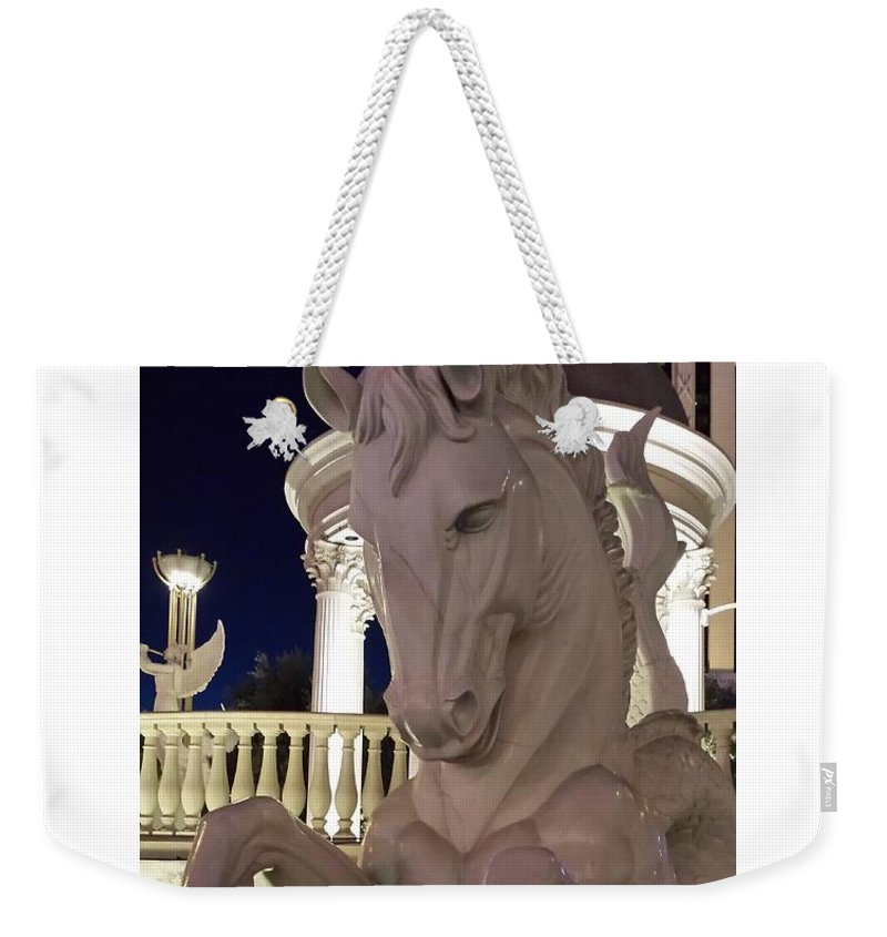 White Weekender Tote Bag featuring the photograph The White Horse by Erica Degni